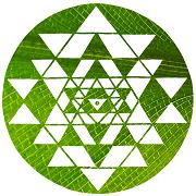 Logo-blattgrün-180x180